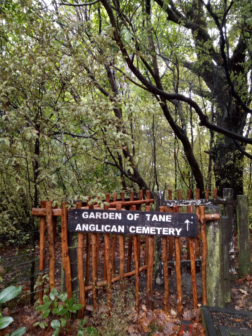 The Akaroa Dissenters Cemetery is nestled in pretty native and exotic vegetation