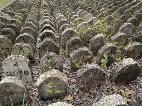 Cement grave markers from Brisbane Mental Hospital are part of a memorial at Goodna Cemetery.